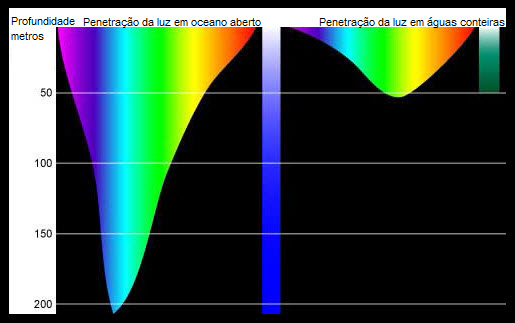penetracao luz oceano